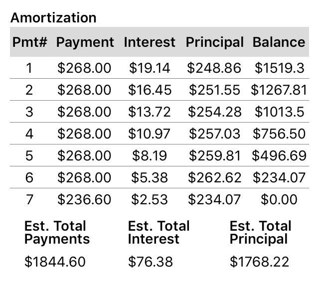 An example of an amortization table within the Pay Off Debt app.